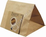 Paper Bag - Pack of 3