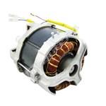 Lawnmower Motor