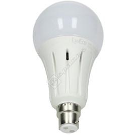 24W B22 GLS LED Bulb - Daylight - ES1768912