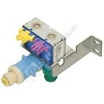 Dual valve